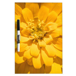 Zinnia Dry Erase Board