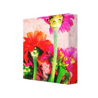 zinnia flower print