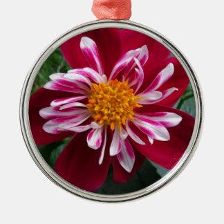 Zinnia Silver-Colored Round Ornament