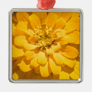 Zinnia Silver-Colored Square Ornament