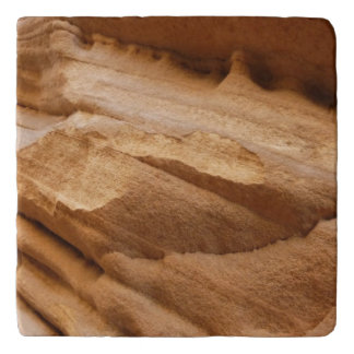 Zion Canyon Wall I Abstract Nature Photography Trivet
