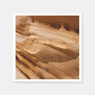 Zion Canyon Wall II Red Rock Abstract Photography Disposable Napkins