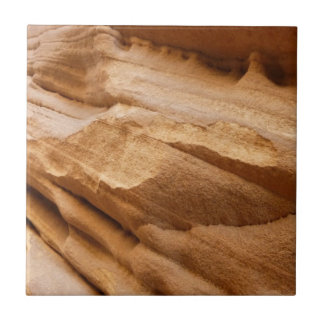 Zion Canyon Wall II Red Rock Abstract Photography Tile