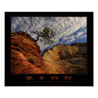 Zion Lone Tree Poster