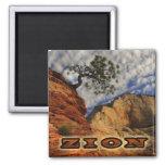 Zion Magnate Square Magnet