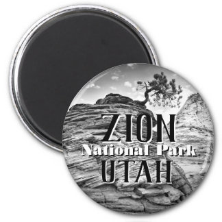 Zion National Park Bonsai Tree Black and White Magnet