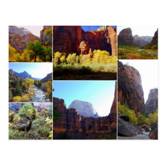 Zion National Park, Utah, Collage Postcard
