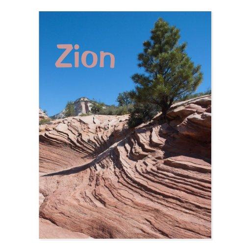 Zion Sandstone Post Cards