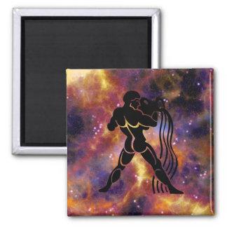 Zodiac Horoscope Aquarius Sign Magnet