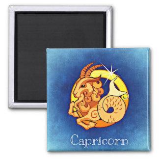 Zodiac Horoscope Astrology Sign Capricorn Magnet
