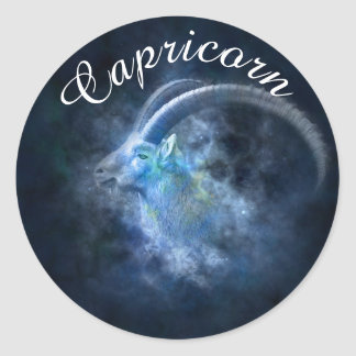Zodiac Horoscope Astrology Sign Capricorn Sticker