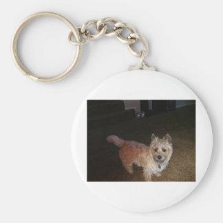 Zoe Cairn Terrier Basic Round Button Keychain