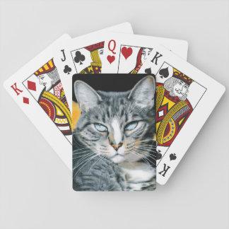 Zoe Kitty Card Deck