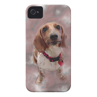 Zoey iPhone 4 Cover