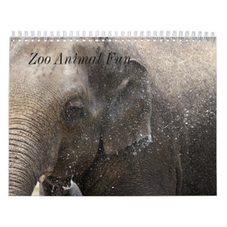 Zoo Animal Fun Wall Calendar