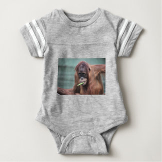 zoo baby bodysuit