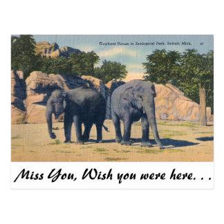 Zoo, Detroit, Michigan Postcard