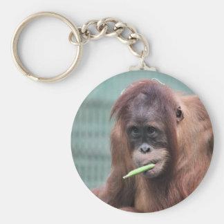 zoo keychain
