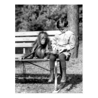 Zoo national vintage Washington de garçon et Carte Postale