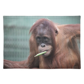 zoo placemat