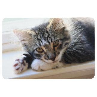 Zorro Kitten on Windowsill Floor Mat