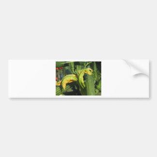Zucchini plant in blossom in the vegetable garden bumper sticker