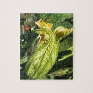 Zucchini plant in blossom in the vegetable garden jigsaw puzzle