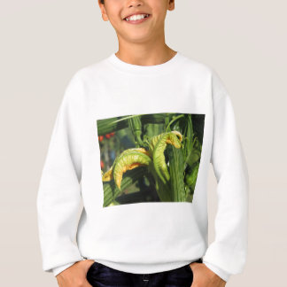 Zucchini plant in blossom in the vegetable garden sweatshirt