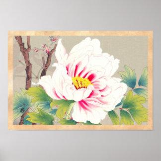Zuigetsu Ikeda Pink Camellia japanese flower art Poster