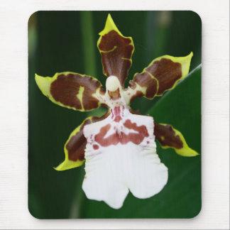 Zygopetalum Orchid Mouse Pad